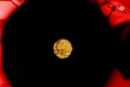 英国哲学家玛丽?沃诺克去世 曾主持奠定人类受精与胚胎学?#38469;?#35268;范