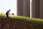 深圳鼓励企业联合竞买重点产业用地 底价可打六折