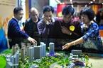 国泰君安:户籍制度改革将明显拉动三线地产销售