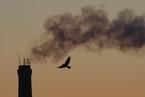全球二氧化碳浓度再攀峰值 数百万年来不曾有