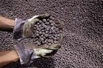 铁矿石期货价跌穿800元 后市行情偏向看空