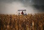 土地管理法修改 农民土地权益如何保障