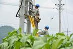能源内参|经营性电力用户发用电计划全面放开;大唐发电控股子公司破产清算