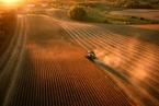 中国相关企业暂停采购美农产品  反制美拟加税举措