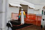 两种埃博拉新疗法引关注 感染初期存活率达9成