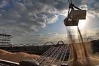 农业农村部下调大豆进口量预估 美豆替代品涌入中国市场