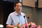 刘世锦:中国经济新增长动力来自低收入群体