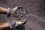 鋼鐵行業上下游利益分配失衡  鐵礦石企業賺大頭