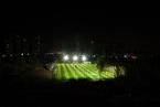 中国足球职业联盟年底成立 中国足协将不再持有股份
