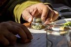獨家|海外大麻素食物涌入三大電商平臺 國內監管缺位藏隱患