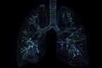 習近平主持中央政治局常委會 研究加強肺炎疫情防控工作