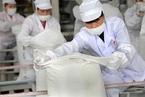 白糖股涨停 蝗灾将刺激全球糖价持续上涨