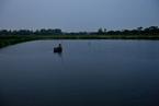 淡水鱼小龙虾运不出 湖北水产养殖业急求交通恢复
