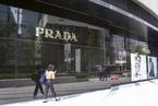 Prada 2019年收入微增2.7%至248亿元  新冠疫情冲击今年业绩