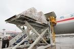 能源内参|疫情暴露专业航空货运短板;中国石化辟谣:对沙特合同履约正常 谁出价低进谁的货