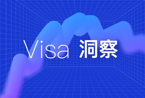 Visa洞察