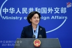 中国部分部门公务员家属遭美停发签证?外交部回应