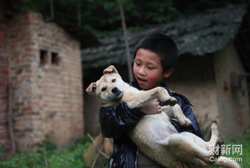 魏海龙正和他家的狗狗玩耍。 财新记者 李漠 摄 _邵氏弃儿