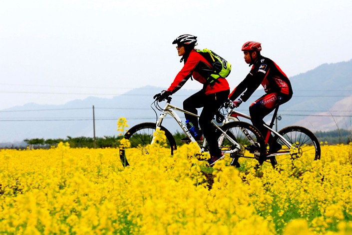 Cycling fans ride bicycles in Liuzhou, Guangxi province.  Photo: IC