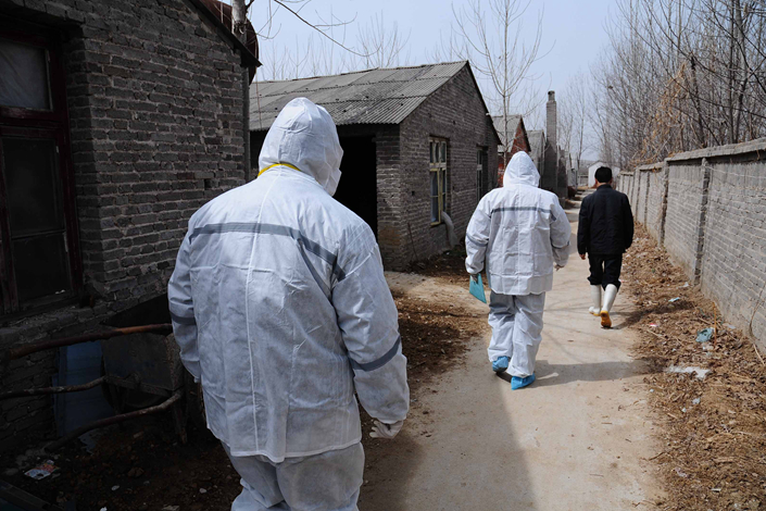 Two animal-health supervision experts prepare to enter a pig farm in Nanyang, Henan province, in March 2011 to perform tests for clenbuterol, an illegal fat-burning stimulant that increases the ratio of lean meat to fat. Photo: IC
