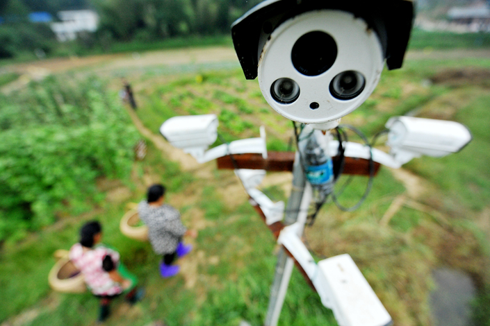A 24-hour online monitoring camera is stationed in an agriculture cooperative in Dexing, Jiangxi province, in September 2015. Chinese farmers are increasingly relying on big-data analytics instead of personal experience to manage their farms. Photo: IC
