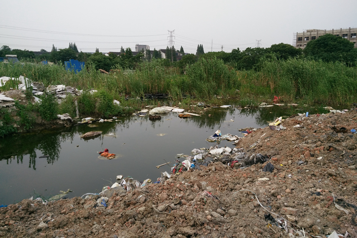 Wetlands near the canal along Lanxi Road in Luoshe town in the city of Wuxi, Jiangsu province, was seriously polluted in June 2015, when this photo was taken. Wuxi prosecutors are suing Shanghai's Yangpu District Bureau of Afforestation & City Appearance, claiming that two unlicensed private firms it hired dumped thousands of tons of garbage on the banks of Taihu Lake in mid-2015. Photo: Visual China