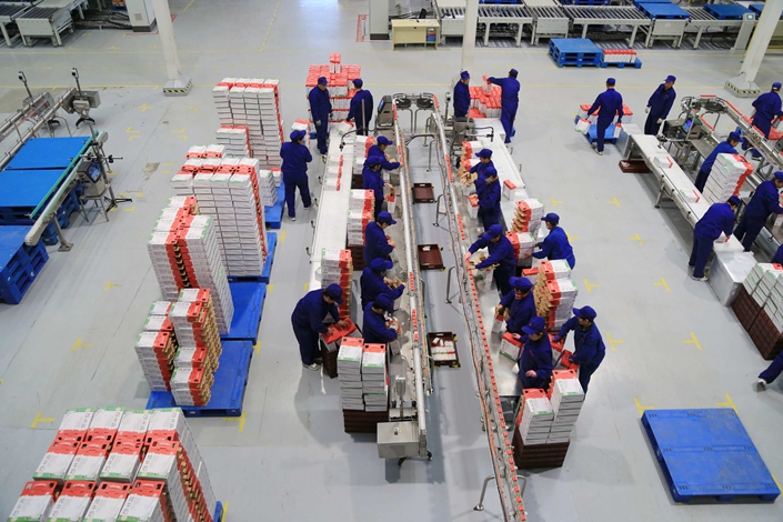 Huishan Dairy employees work in the company's production workshop in Shenyang, Liaoning province, in April 2015. The provincial and city governments are working with Huishan to restructure its debts. Photo: CNS