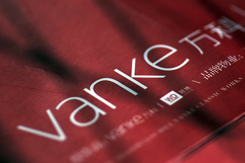 The failed hostile takeover of China Vanke, the world's largest property developer by revenue, shows that shadow banking should no longer be outside the scope of the nation's regulators. Photo: IC