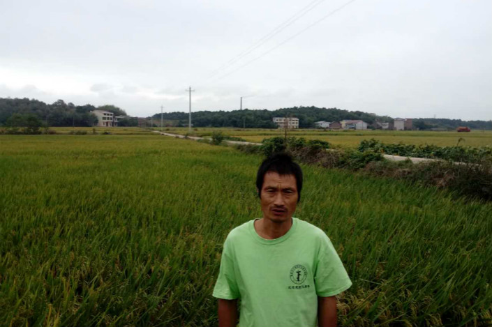 Environmental NGO Greenpeace traced rice products tainted with cadmium back to fields near the industrial park home to the factory which Tang Donghua (pictured) alleges contaminated his crops. Photo: Courtesy of Tang Donghua