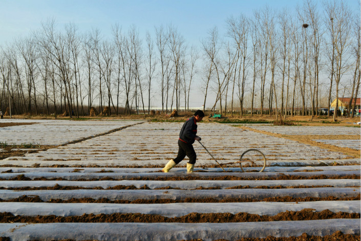 The rural household land-lease system was introduced in the 1980s, and leases were extended for 30 years in the late 1990s. Photo: Visual China