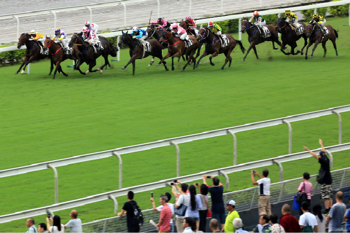 Hainan provincial authorities suspended the registration of companies looking to get into businesses related to gambling on horse racing, and revoked approval for sports gambling from companies that had previously registered as gambling businesses. Above, the National Day Cup horse race takes place at the Sha Tin Racecourse in Hong Kong. Photo: IC