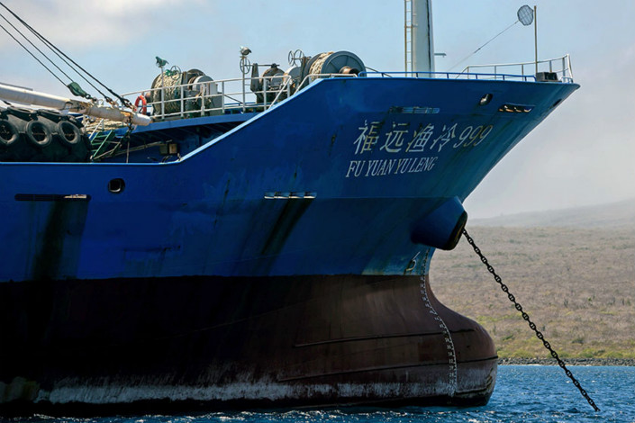 The captain of the refrigerator ship Fu Yuan Yu Leng 999 (above) has been placed on a fishing-industry blacklist, six months after the vessel was found carrying 6,223 sharks in the protected waters around Ecuador's Galapagos Islands. Photo: VCG