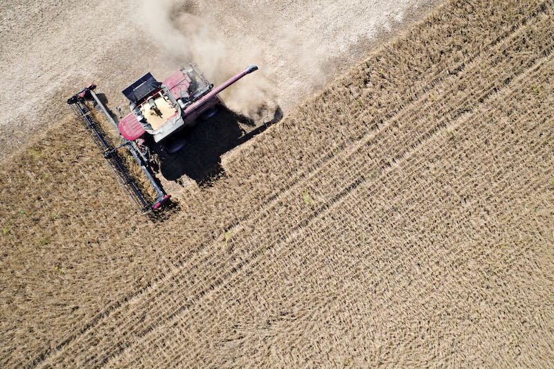 American soybeans, like these being harvested in Illinois, are on the list of targeted products by Beijing in response to U.S. threatened tariffs. Photo: VCG