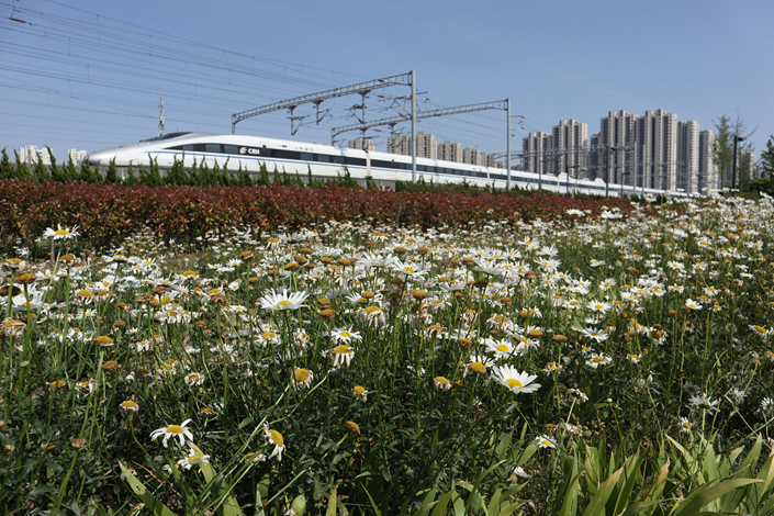 A bullet train travels past a park in Qingdao, Shandong province on June 3. Photo: VCG