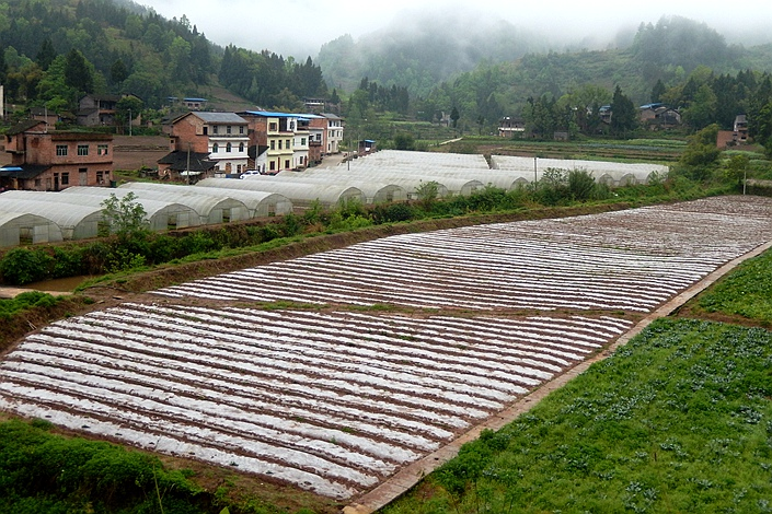 Farmland is seen in Yunyang county, Chongqing municipality, on May 29. Photo: IC