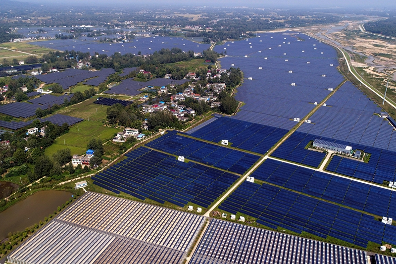 Solar panels cover fields in a demonstration zone in eastern China's Anhui province. Photo: VCG
