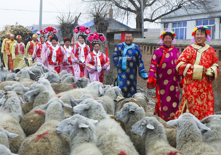 On their way to an ancestral ceremony, ethnic Manchu citizens in China's Heilongjiang province pass by a flock of sheep, on Nov. 12, 2010. Photo: VCG
