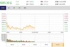 今日午盘:苹果概念重挫 沪指弱势调整跌0.63%
