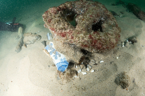 Porcelain pieces that date back to China's late Ming Dynasty (1368-1644) were found at the shipwreck. Photo: VCG