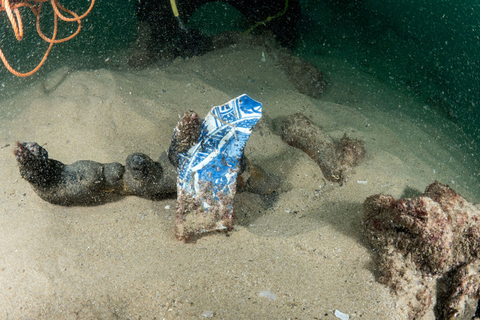 Porcelain pieces that date back to China's late Ming Dynasty (1368-1644) are found at the shipwreck. Photo: VCG