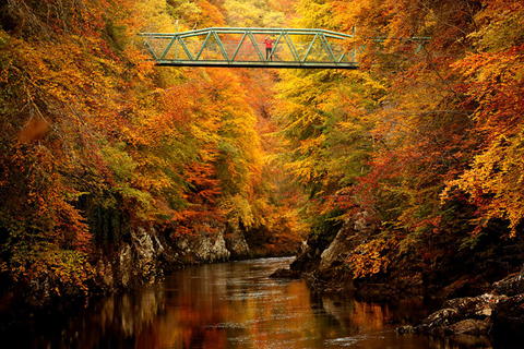 A woman stands on a footbridge over the River Garry near Pitlochry, Scotland, on Oct. 10. Photo: VCG