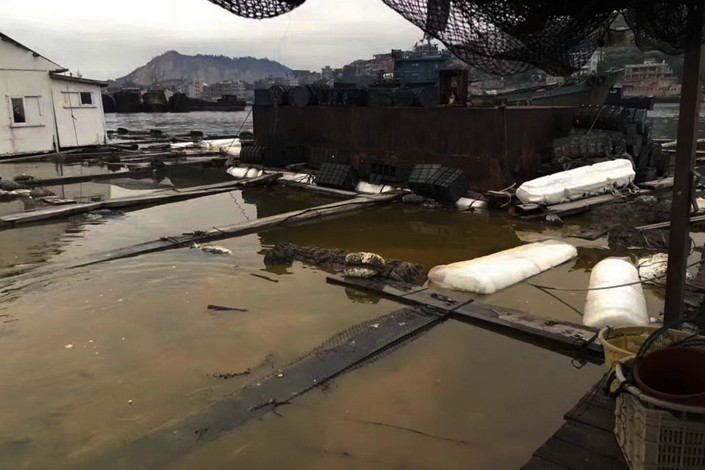 A wharf affected by the chemical spill in Quanzhou, Fujian province on Nov. 7. Photo: IC