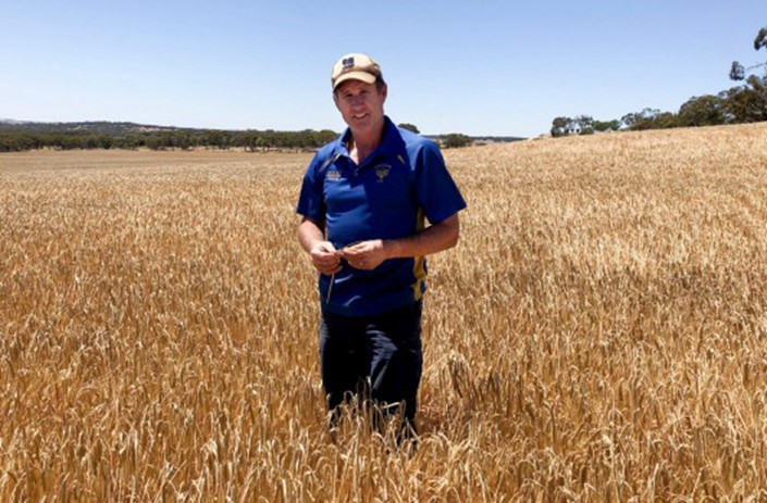 Farmer Erin Cahill stands in his soon-to-be harvested barley crop. China is using its probe into grain exports to send a warning to Australia. Photo: AFR