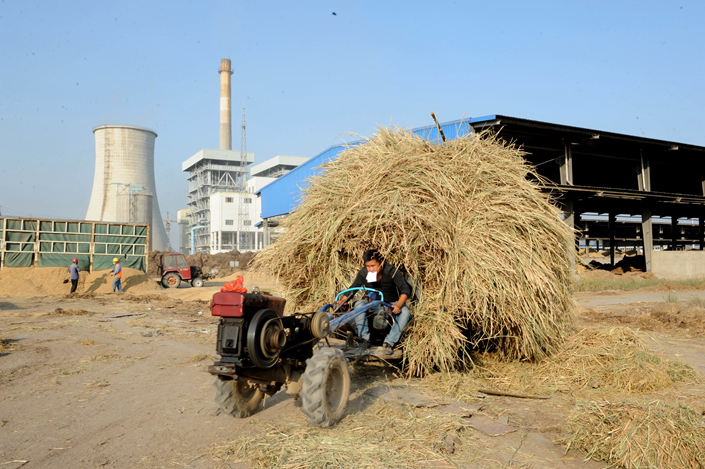 A worker hauls straw in October 2015 to a biomass power plant owned by the embattled Kaidi Ecological in East China's Anhui province. Photo: IC