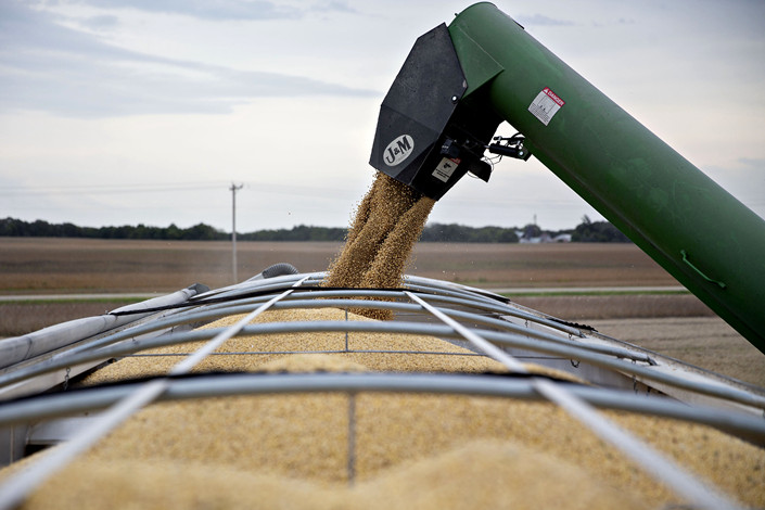 Soybeans get loaded into a grain cart in the U.S. on Sept. 18. Photo: VCG