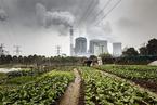 环境部:要搞绿色一带一路 碳排放市场火电先上