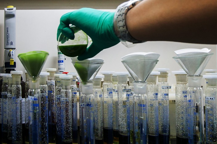 Staff members filter samples on June 13 in a laboratory at an agricultural inspection center in the southern city of Shenzhen. Photo: VCG