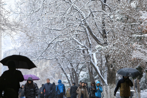 People walk in snow in Harbin on Wednesday. Photo: VCG