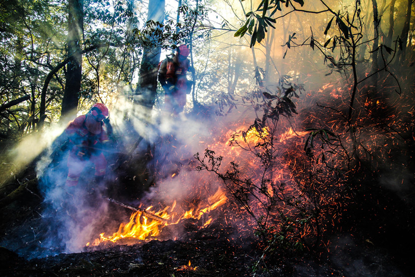 Two firefighters work to put out some burning brush in a forest in Muli county on Feb. 12. Photo: VCG_Gallery: Sichuan Forest Fire Kills 30