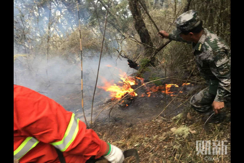 Firefighters work to put out some burning brush on Sunday. Photo: Cao Jianhua